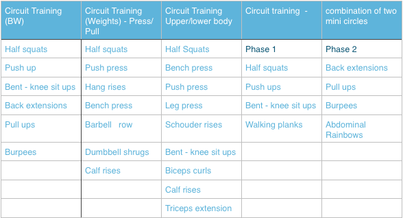 Circuit training- fit and sexy fast